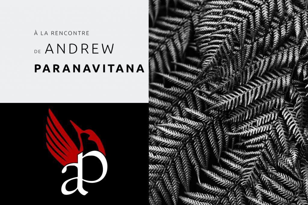 Interview de l'artiste Andrew Paranavitana